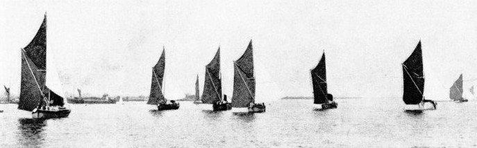 THE START of a Thames sailing barge race