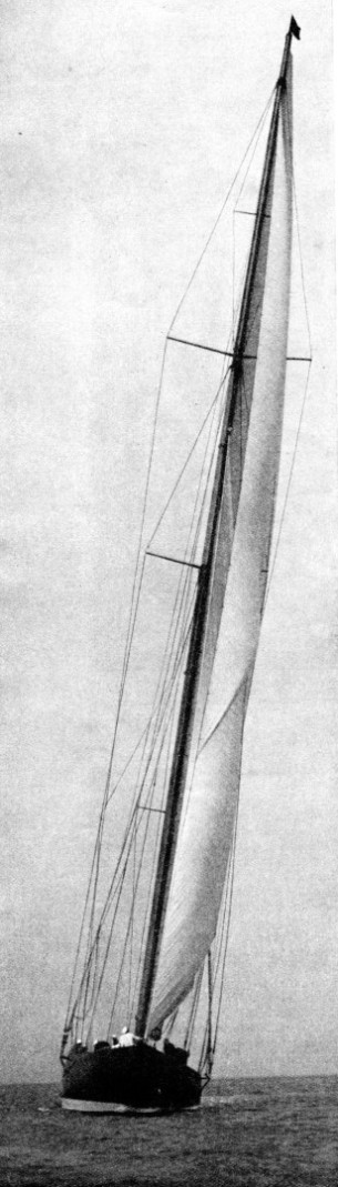 THE TALL MAST of Sir Thomas Lipton's Shamrock V