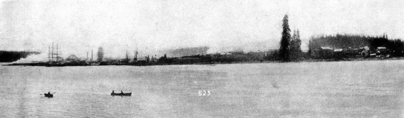 The south shore of Burrard Inlet as it appeared in 1886