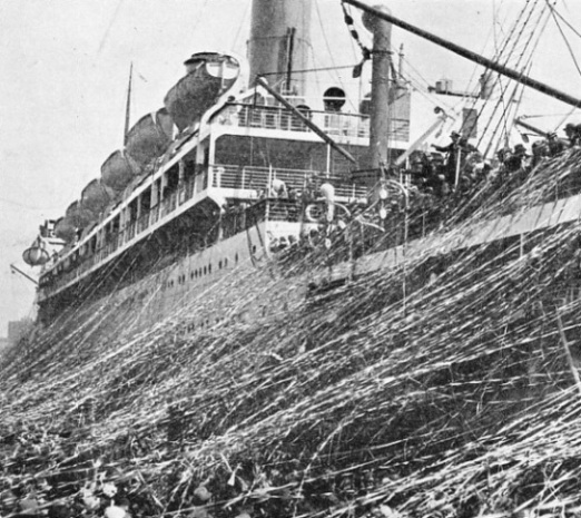The gaily-coloured mass of streamers thrown down from the deck of an Orient liner on to a quay at Sydney break as the vessel moves away