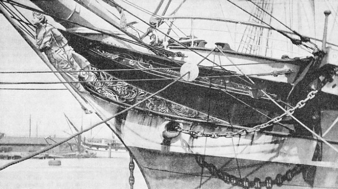 THE GRACEFUL STEM and figurehead of the Port Jackson