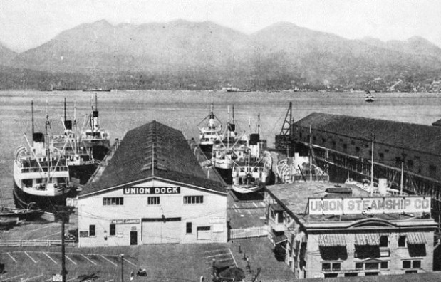 Ships of the Union Steamship Company at their piers in Vancouver Harbour